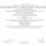 nina_diplom